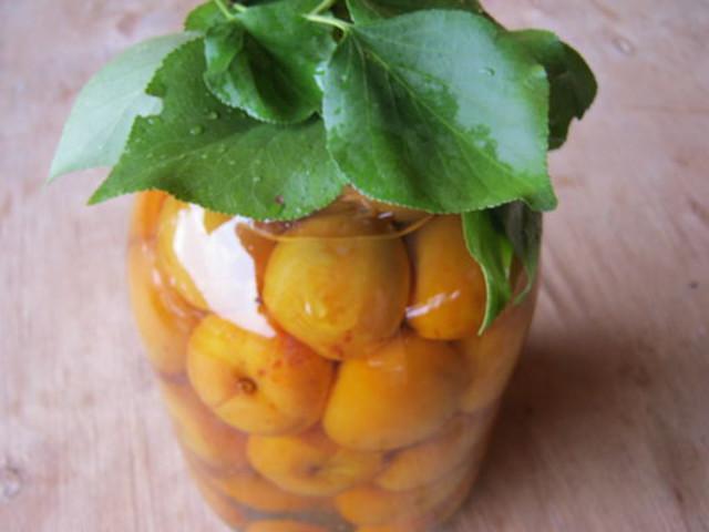 Обалденный компот из свежих абрикосов на зиму