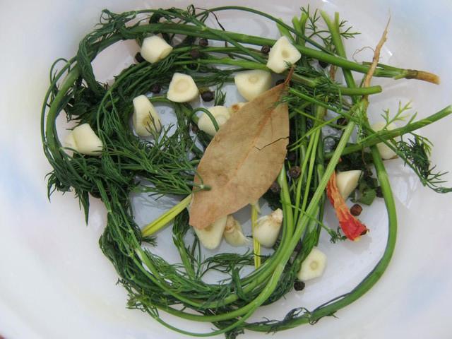 Зелень и специи для малосольных огурцов