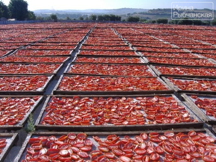 Вяленые помидоры своими руками