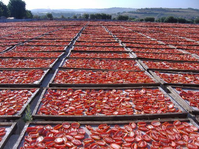 Рецепт помидоры вяленые
