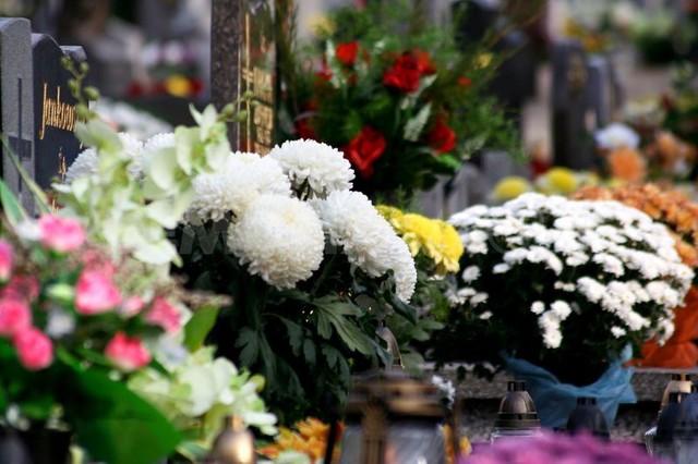 День всех святых, хризантемы на памятнике