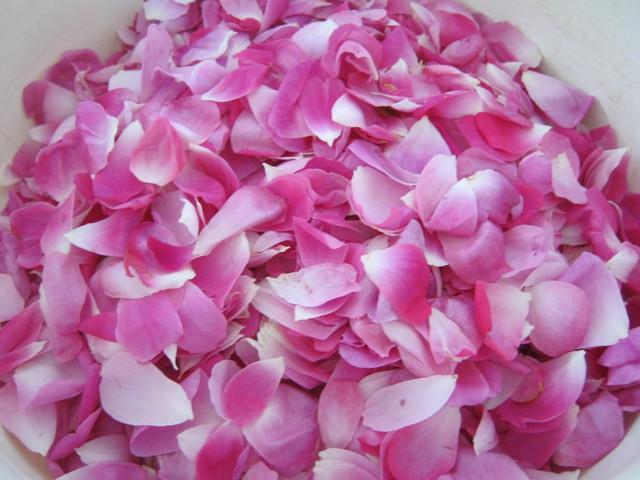 Оборванные лепестки роз для варенья