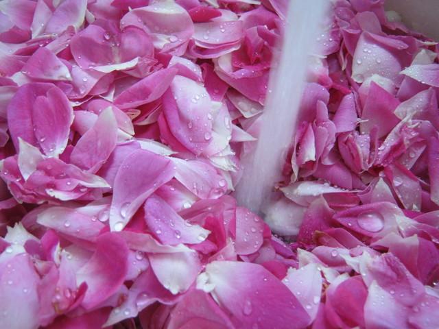 Моем лепестки роз