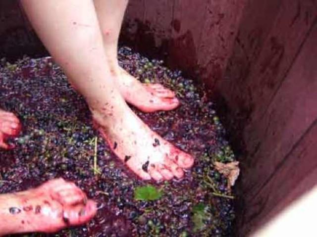 Давим виноград аутентичным способом