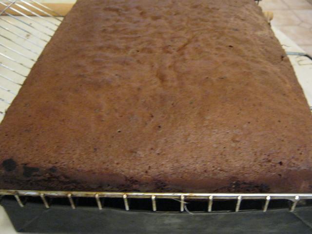 Шоколадный бисквит на решетке