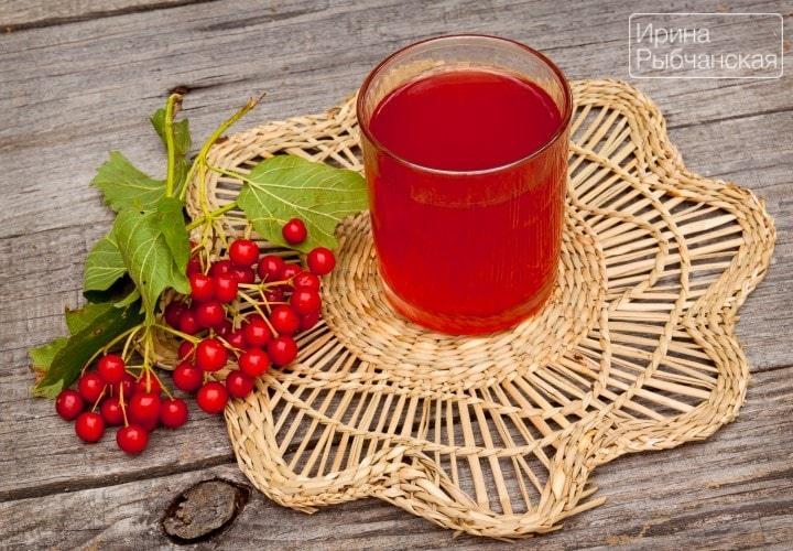 Рецепт калины с медом при различных заболеваниях