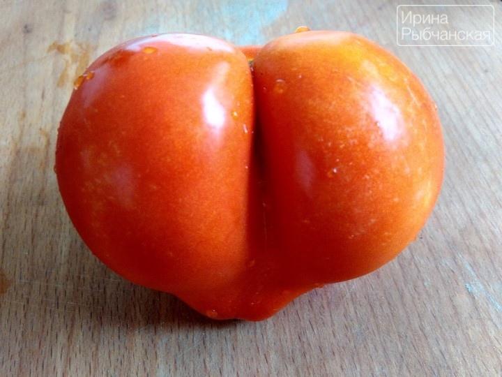 Миниатюра к статье Кетчуп из помидоров на зиму пальчики оближешь— рецепты на любой вкус