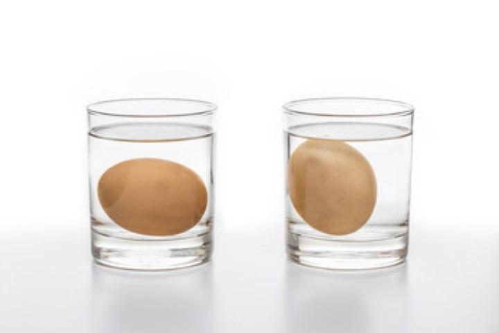 Миниатюра к статье Как проверить свежесть сырых куриных и перепелиных яиц в воде